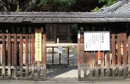 Ami_0031a
