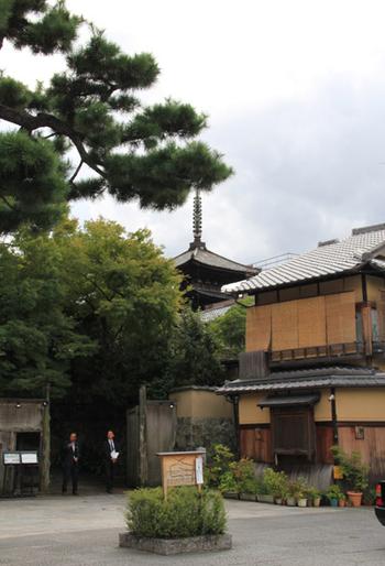 Ami_0066a